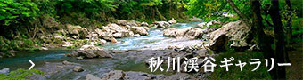 秋川渓谷ギャラリー
