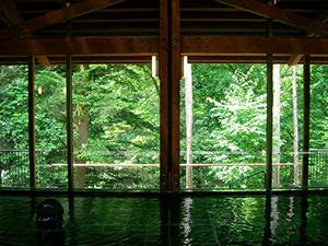 秋川渓谷瀬音の湯
